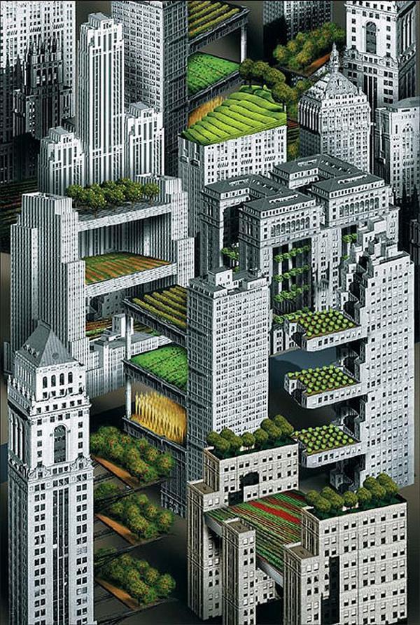 Meer #natuur  in de stad, hoe doen we dat? Bv. met een visie over #daklandbouw @Kiemkracht @EdgarNeo @NathanRozema http://t.co/exPjifOgj2