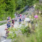 RT @alpedhuezfrance: D-80 before @alpedhuzes  6000 cyclists will climb the 21 bends to raise money for cancer research  RT to support them …