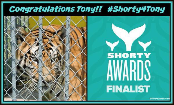 #WonderfulNewsInFourWords TONY: SHORTY AWARDS FINALIST!! @shortyawards