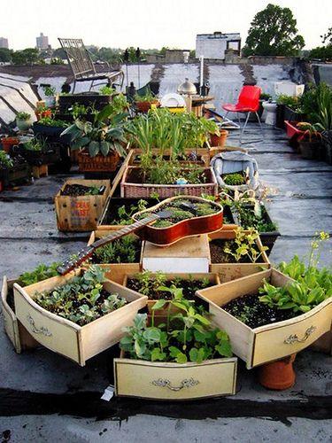 Dubbel #duurzaam: #stadslandbouw op daken gecombineerd met recycling, hoe mooi is dat? @groenkennisnet @urgenda http://t.co/JpXnHmFzcW