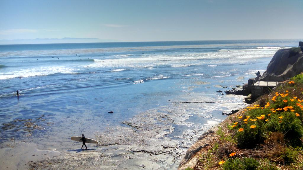 Another beautiful day at Pleasure Point #SantaCruzNow http://t.co/zKFqFqg6Q8