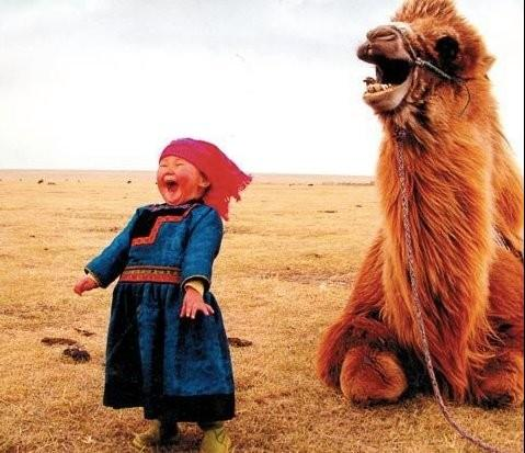 If you are cranky or out of sorts, this will help. Go ahead and laugh in the teeth of the sand storm. http://t.co/5VnjSL5Y14