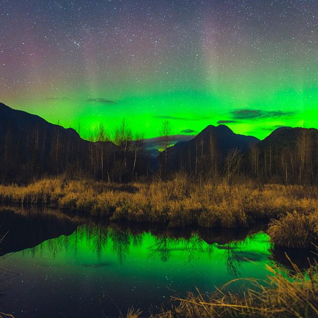 An amazing shot of last night's Aurora Borealis spotted near #Vancouver! (photo: bdytang via Instagram) #exploreBC http://t.co/0e78IHWjMd