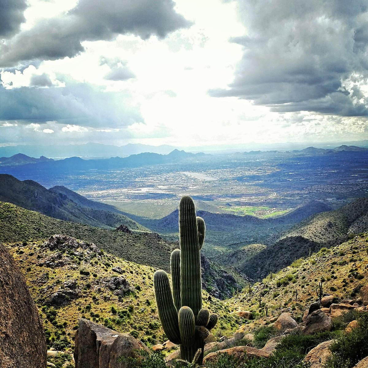 Love RT @azcentral: #AZ365: The stunning desert view from the Tom's Thumb Trail in #Scottsdale http://t.co/QsFIelGmGt http://t.co/sejmpFIw9z