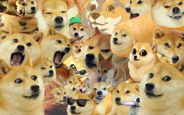 Doge wow amaze