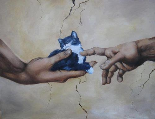 What Michelangelo meant to paint..... http://t.co/tdp2eNtvZP