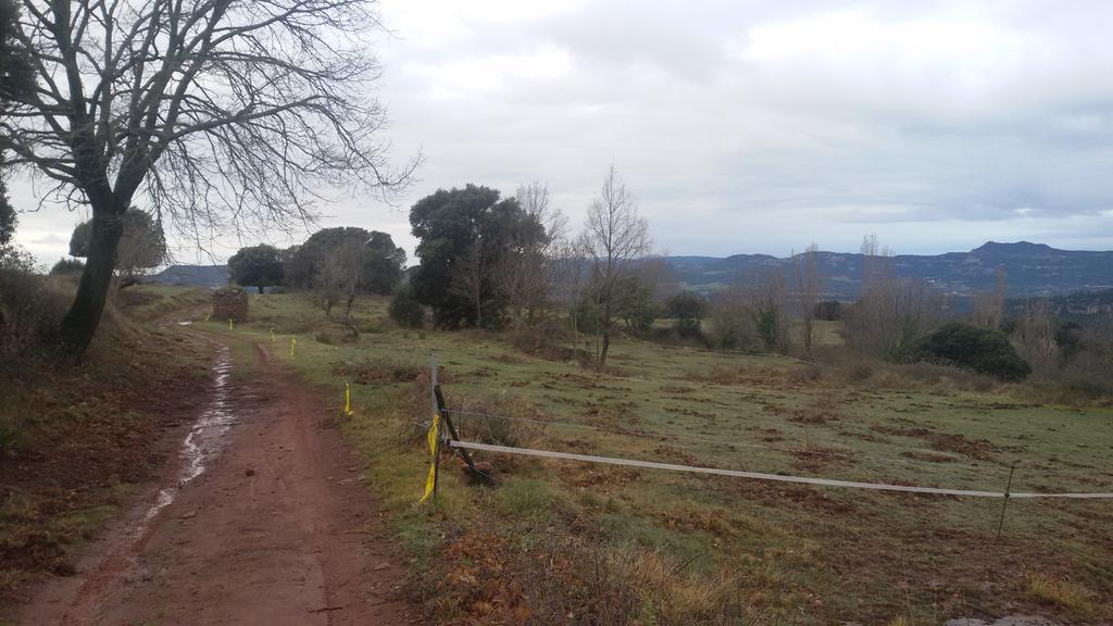Imagen Cursa de La Vall del Congost