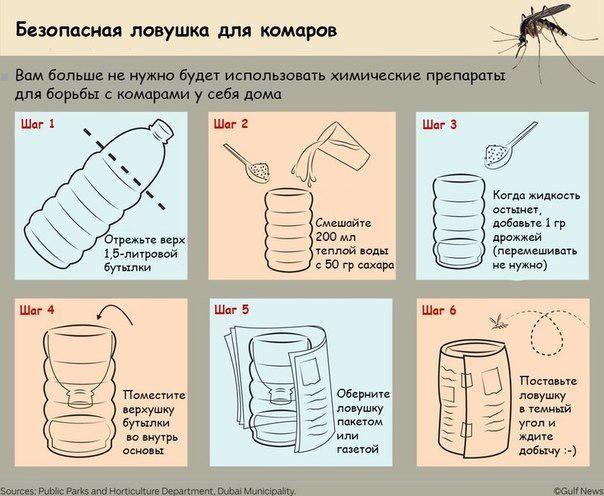 Как сделать ловушки в домашних условиях для людей дома