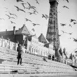 Seagulls in front of Blackpool Tower in search of food, circa 1937. #Blackpool #Lancashire #NorthWest http://t.co/20KNxijdTZ