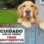 Cuidado con el perro tiene sentimientos  http://t.co/5HwSvC21Mn