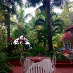 How often do we wake up to this? #Goa #Getaway