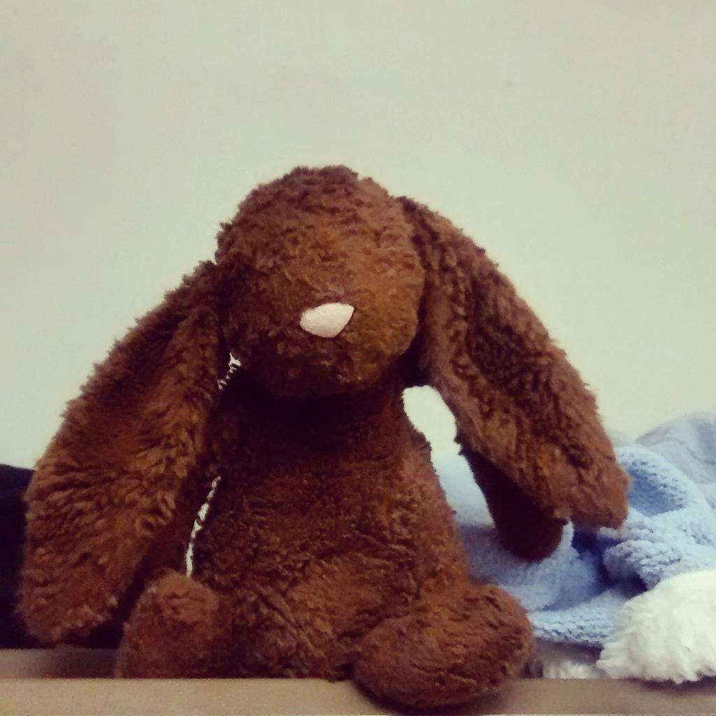 A reminder, with all the new bunnies from the weekend, our #foundbunny is still OK. If he's yours let us know :) http://t.co/rOcONQbhho
