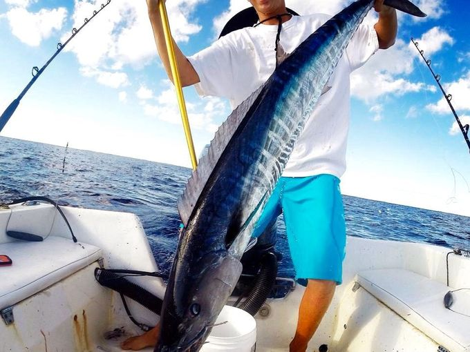 The Bahamas Sport Fishing Network shows off its craziest Wahoo catches: