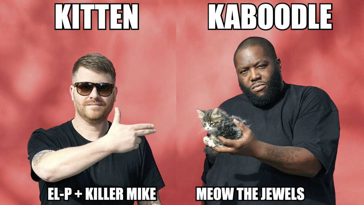 Kitten Kaboodle: @TheRealElP and @KillerMikeGTO Meow the Jewels | http://t.co/Rvjma9DONx | #FLOOD1 @RunJewels http://t.co/iU3bqm2Eig