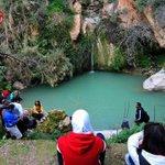 الربيع في وادي الريان #يلا_على_الأردن #اكتشف_الأردن #الأردن #Go_To_Jordan #jordan #Dubai #jo @nalfayez #السعودية http://t.co/JXXmO8vxhF