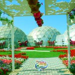 First butterfly garden opens in #Dubai http://t.co/GpWlDMszlY
