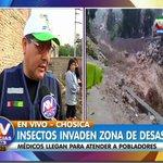 #ATVNoticiasAlDía EN VIVO: Insectos invaden zona de desastre en #Chosica. Médicos llegan para atender en la zona. http://t.co/tuCAvE1wOZ