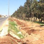 شكرا امانة عمان لتشجير الطريق الجديد للمطار بعد سفلتة وانارة وترصيف ونتمنى صيانة الجزء القديم @GAMtweets #jo #الاردن http://t.co/juxR39z6Pp