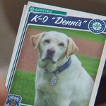 Our thanks and appreciation to @SeattlePD K-9 Dennis as he retires from service today. http://t.co/IVi3fRMUtc http://t.co/Ss5EWfZ0zn