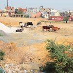 1,000 acres of prime Delhi land encroached by land sharks and squatters http://t.co/2jQaCN9Mow http://t.co/X8UTHh7Jap