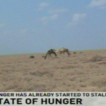 State of Hunger: Food security a perennial challenge in Kenya http://t.co/RElAD4uv1b http://t.co/bOGAJkbBEy
