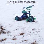 Yep. #yqr #seeyqr #yxe #sask #skstorm #sk #WinterWonderland #spring #theREALmarchmadness http://t.co/GRtt52jQXK
