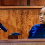 #ShayannaJenkins: gun from kitchen drawer looks similar in shape & color, not sure size. #Hernandez @FoxCT http://t.co/uccLRsNeTV