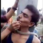 Na Índia, homem é amarrado a poste por vender vacas. http://t.co/JZLmKap6c7 http://t.co/2FlKa9GX50