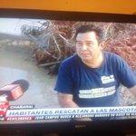 "@24HorasTVN @MiauCarrasco: #chilebusca #chañaral Jaime Carrasco Pineda salio rescatando animales en TVN http://t.co/JjqOShfj6a"""