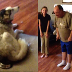 This dad doesn't like it when the dog eats his potato skin. http://t.co/3busFtb1Dm http://t.co/Jk9dyi1wXz