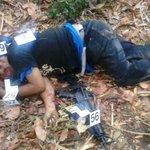 #ImágenesFuertes:  Así quedaron los pandilleros que fueron acribillados por PNC en una finca de San José Villanueva http://t.co/kUux8n6mDH