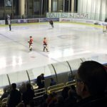 Hockey sur glace, paintball et esprit de famille, les joueurs de L1 se détendent http://t.co/ZvhHKCCfT0 http://t.co/aTdoUr1qE8