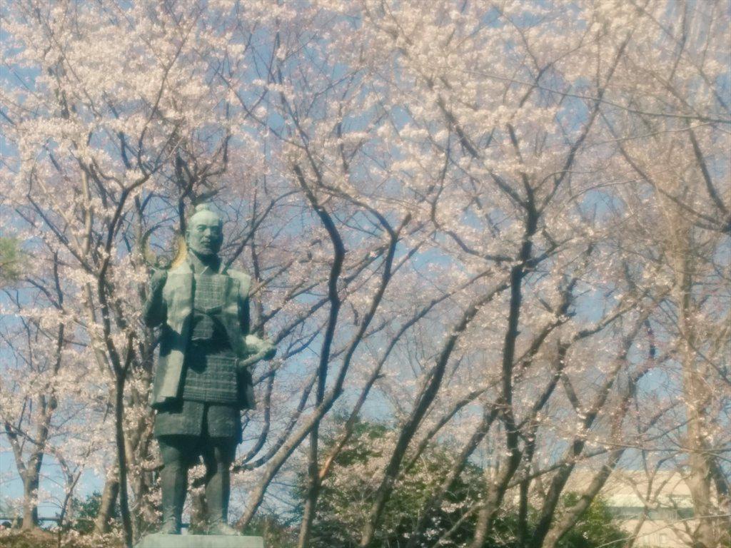 桜によってフェミニンな家康公。 http://t.co/xPkal3c0Jy