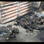 مقاتلو الحراك الجنوبي يواجهون بشراسة مليشيا الحوثي وقوات المخلوع في عدن #عاصفة_الحزم #الجنوب_العربي_ينتفض http://t.co/TlQfuw1HfJ