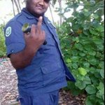 Sosal meediaa ga fethurey hadi huthuru amalu hingaa meeheh ge photoleh http://t.co/lp8tHcy0Sz