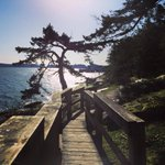 Where is your favourite park to #ExploreNanaimo? We love Jack Point! Have you been? #Nanaimo http://t.co/38HTthT3AO