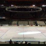 @boxersbordeaux - @HormadiElite H-1 Le calme avant la tempête #hockey #Playoffs2015D1 #finale http://t.co/F7q9RIErrI
