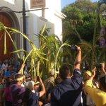 Palmeros de Chacao arribaron hoy a Caracas para darle comienzo a la Semana Santa #28M (Fotos: @leoleitoleo) http://t.co/lnaDZ5HGEz