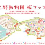 上野動物園の桜マップは、東京ズーネットサイト内「おすすめコース」のページをごらんください(☞http://t.co/mBHpvucyRF) http://t.co/FrxrwjH8jn