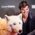 NEW: Taylor at the Game of Thrones season 5 premiere after party (March 28, 2015) http://t.co/8IrUb587hB http://t.co/vKVdKGqZAy