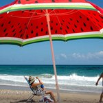 36 hours in Palm Beach, Florida http://t.co/MoiAnnB8Wm http://t.co/jJN2orUgKu