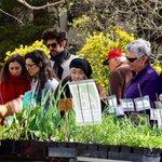 Primavera, la fête des fleurs et plantes rares au jardin des plantes, bd Henri IV à #Montpellier ce dimanche http://t.co/FNL8HwsTkL