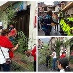 Hacemos presencia en el Norte de Antioquia con operativos en varios municipios para sensibilizar sobre #PalmaDeCera http://t.co/AXS6EWkoQf
