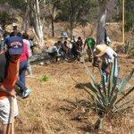@AIP_Oaxaca @UrbanosOax @STyDE_GobOax @OaxacaTurismoCd @GobCdOax Reforestacion cerro del Fortín http://t.co/jlypEcJkO8