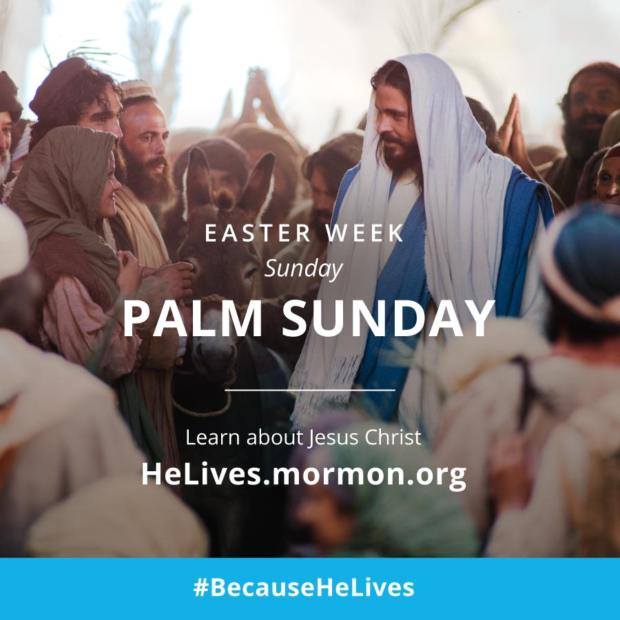 #Easter week is the most important week in history. Learn more at http://t.co/VQw7fkV2iV #BecauseHeLives http://t.co/XphqFurzFZ