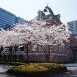 こんにちは。満開の #桜 と法務省赤れんが棟です♪ちなみに,法務史料展示室(平日10時~18時開館)のバルコニーからは満開の桜と桜田門を同時に眺めることができます。http://t.co/GBe8ybZYVY http://t.co/ck3jpjZt87