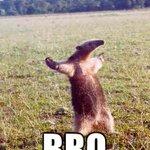 """@NewsOfTheDead: Carol be like???? #TheWalkingDead #TWDFinale http://t.co/TqxdFFLf7Q"" ????????????"