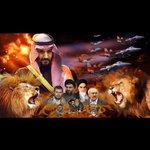 الذيب يدرع بالغنم ولا يحسب حسابها #عاصفة_الحزم #عاصفة_الحزم_السعودية #الحرب_على_الحوثيين http://t.co/YNLyop2NPk