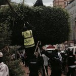 Kampala: cutting trees bottom-up and top-down. http://t.co/UkbS02LJ4f