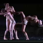 """Notre dernière captation, """"La fulgurance du vivant"""", est en ligne ! http://t.co/fsnbJOOyWP #Danse #Captation #Nantes http://t.co/etBmMksLcI"""